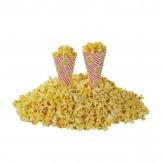 Popcorn Cones x50